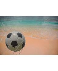 Beach-Soccer Net - 5.50 х 2.20 m.